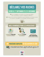 Affiche déclaration de ruches